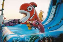 the giant slide Wave - detail of dolphin