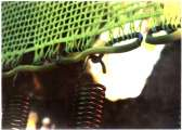 Molla zincata per tappeti elastici