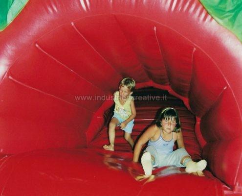 fabricants de jeux gonflables - Poisson Rouge gonflable