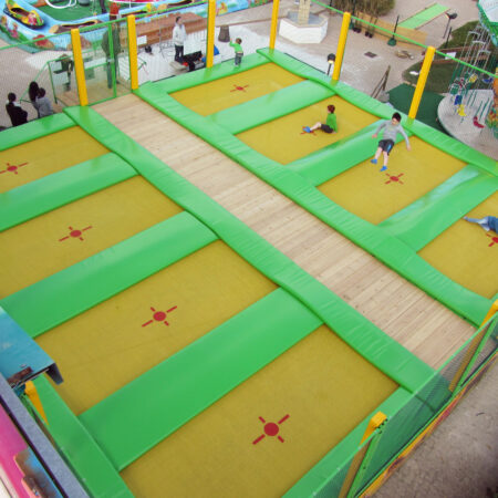 Trampoline with 8 places in Marieland (Maries de la Mers, France))